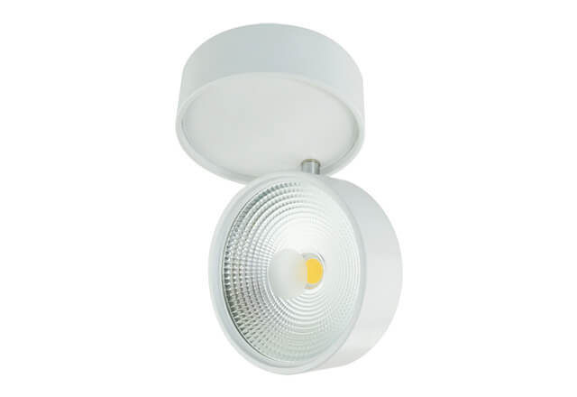 Surface Mounted Downlight PH-18